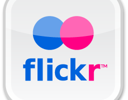 Flickr Management – Organizing Photos and Albums